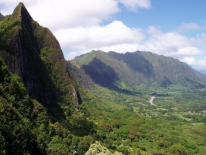 pali-lookout